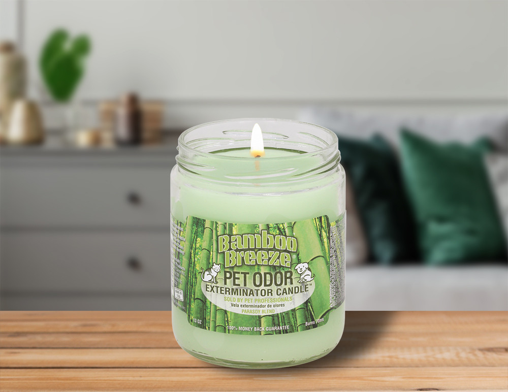 Bamboo Breeze 13oz Jar Candle