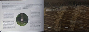 book insides 2.jpg