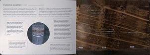book insise 3.jpg