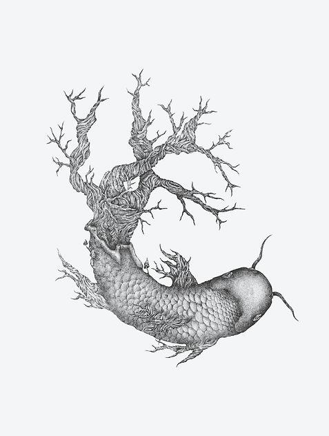 koi fish ko-projekt ktarzyna-roman