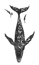 eucalyptus whale.png