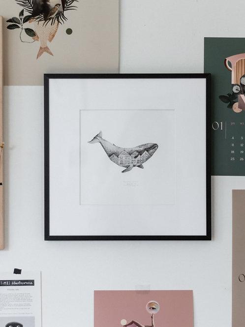 Bryggen Whale in a frame