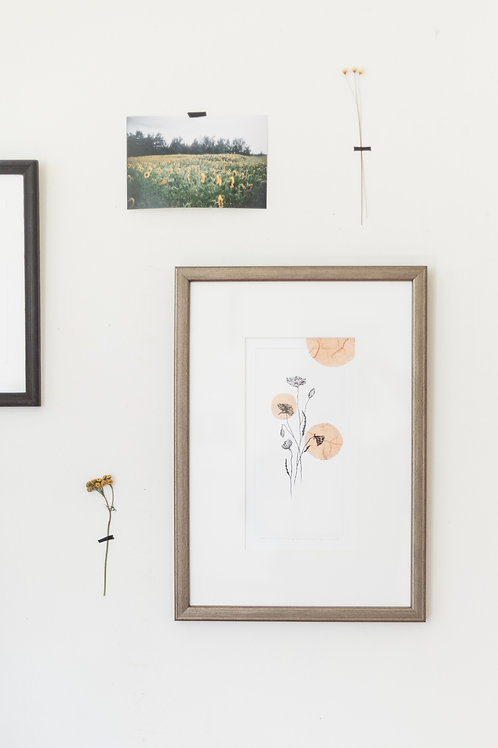 Poppies in a frame