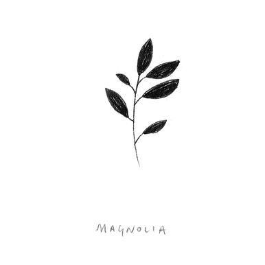 6-magnolia.jpg