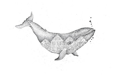 wieloryb-ilustracja-behance.jpg