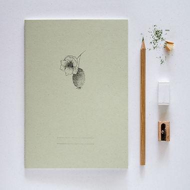 zeszyty-kiwi.jpg