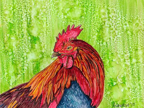 Rooster - original