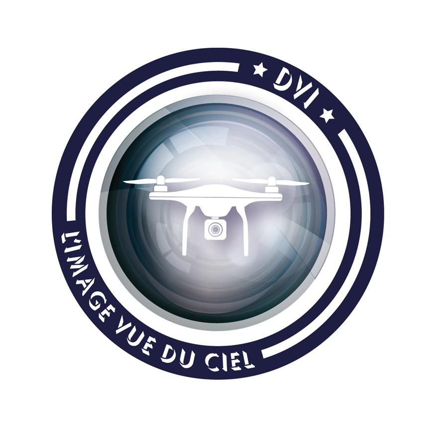 Logo pour la société DVI