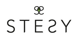Création du logo société stesy