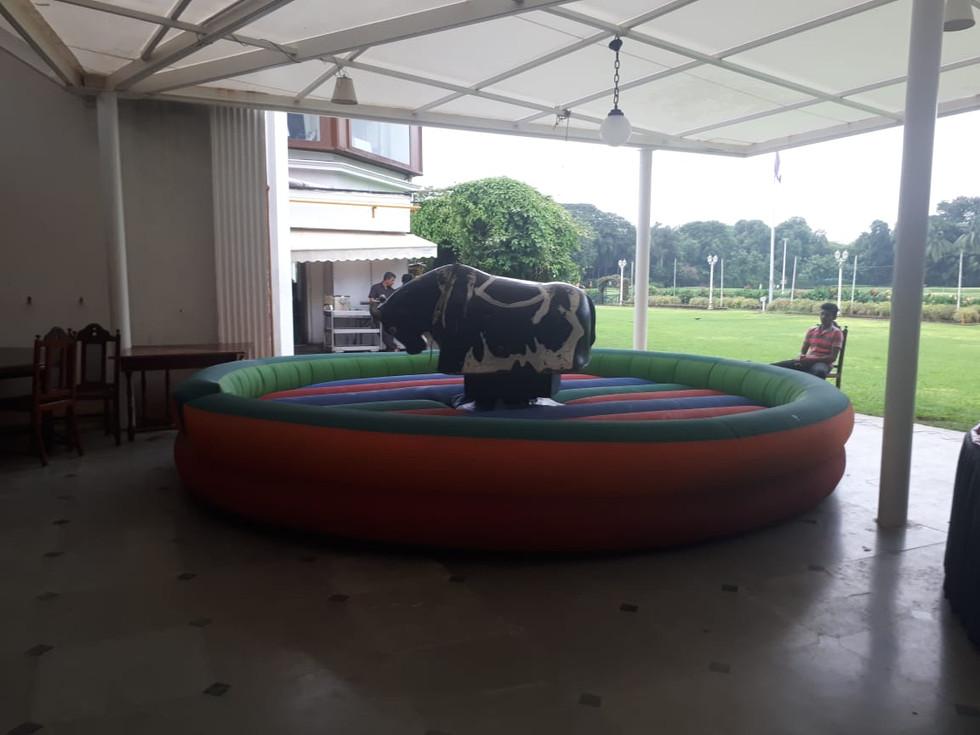 Electric bull ride