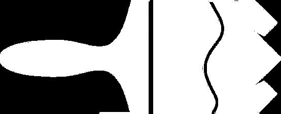 Eno Painting Co. Logo watermark 2.png
