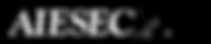 aiesec-logo-png-transparent_edited.png