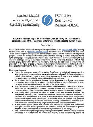 ESCRNet_CAWG_Position_UN_Treaty_October_