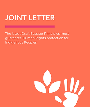 Joint Letter - EPFIs to Protect Indigeno