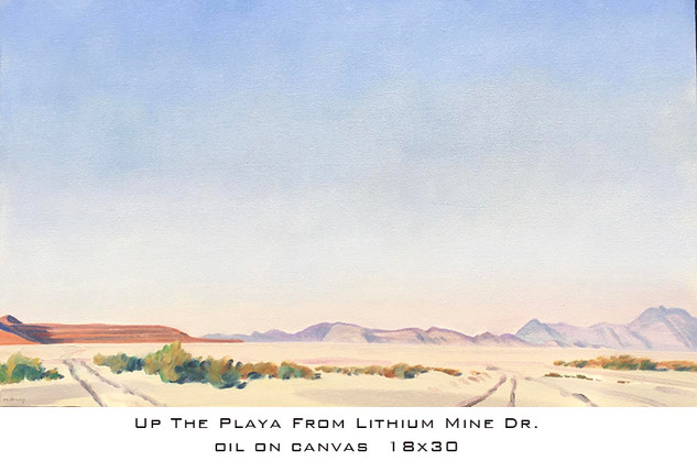 Drury Up the Playa from Lithium Mine Rd.