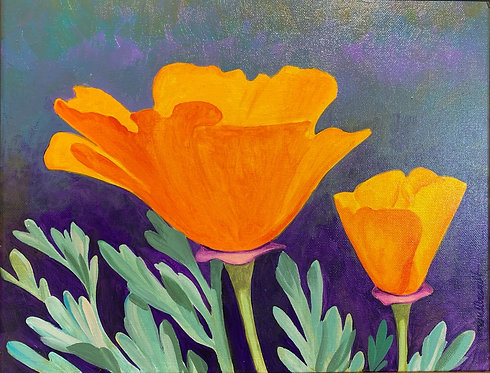 SOLD California Poppy