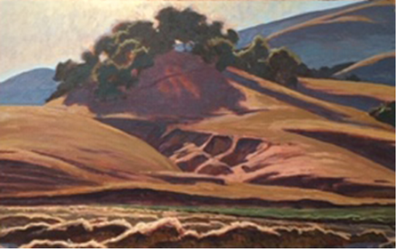 Bean Fields & Erosion, Giorgi Ranch