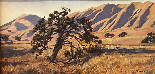 Oak and Hills, September