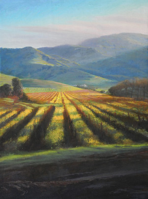 Early Spring in the Vineyards