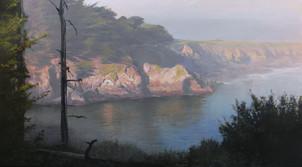 1716. Sunlit Cove, Mendocino