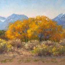 High Desert Beauty, 12x20 pastel.jpg