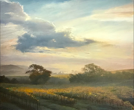 Morning Clouds in the Vineyards