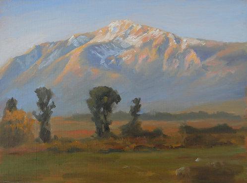 Mt. Tam, Morning