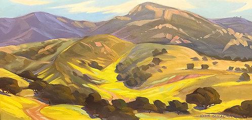 Mustard Bloom, Santa Barbara Foothills