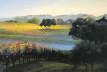 1830. In Alexander Valley