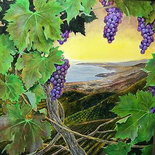 Wullbrandt grapes.jpg