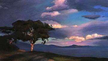Storm Clouds, Shoreline Park