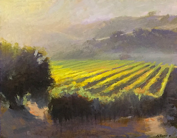 2016. Light on The Vines