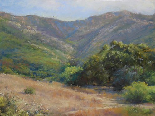 Morning Glow, Gaviota
