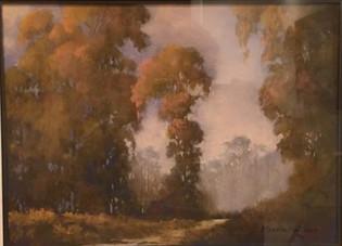 Ellwood Preserve in Mist