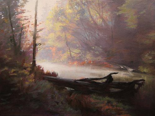 SOLD River Mist, Lagunitas Creek