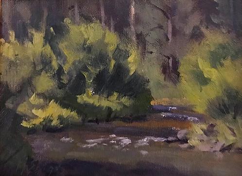 A Sierra Stream