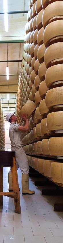 Parmigiano reggiano, caseificio