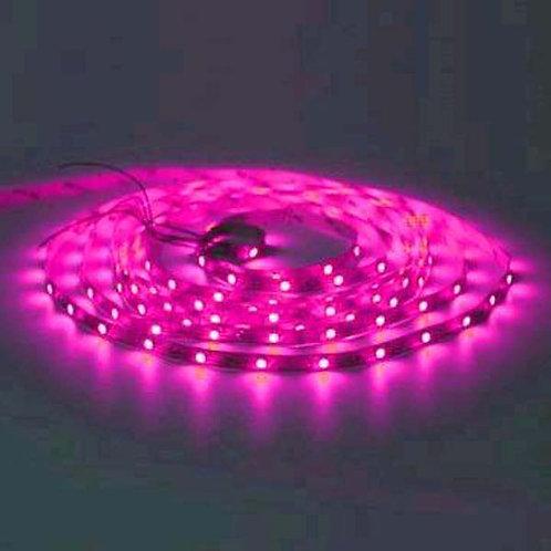 Light Strip - Plasmaglow Lumaflex - 3' - Pink LED