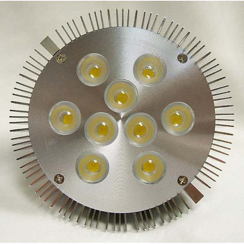 Warm White Par 30 Indoor LED Light- 8 Watt