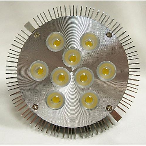 Warm White Par 38 Indoor LED Light- 10 Watt