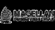 magellan-development-group-logo-vector_e