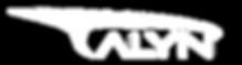 Talyn_Logo_White (2).png