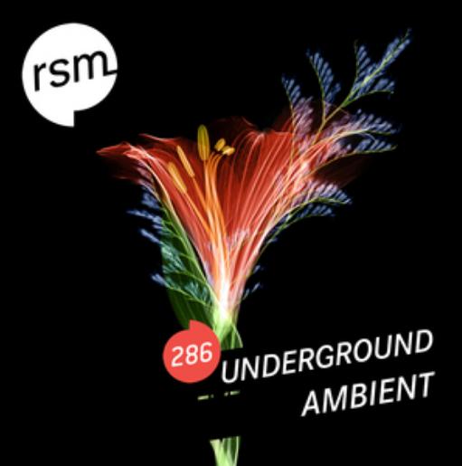 Ambient Ubderground Cover