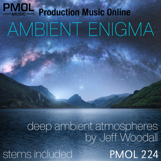 New Album 'AMBIENT ENIGMA'