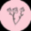 Rose Logo-01.png
