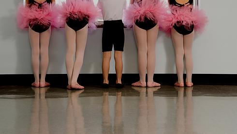Elegant Ballet Blog Banner.png