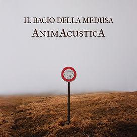 Animacustica.jpeg