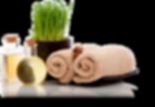 Spa Stinny Snellville Georgia - Massage