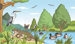 Fauna del riu