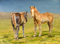 Painting of two Breton foals in Cerd